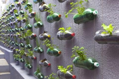 ایده ای نو ؛ باغ عمودی شهری