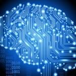 عمر سلول های مغز چقدر است؟