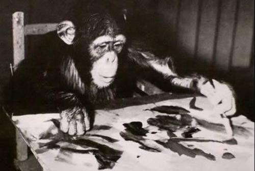 میمون2