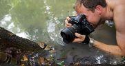 تصاویر زیبا از دنیای مارها / شکار مار تا خوراک مار