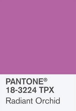 18-3224 TPX