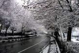 ایلام؛ بارش برف پاییزی در آستانه شب یلدا