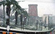 بارش برف نوروزی در لاهیجان / غافلگیری مسافران
