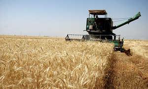توصیههای هواشناسی کشاورزی به کشاورزان