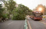 سازمان هواشناسی: وزش مجدد باد شدید در تهران