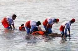 غرق شدن در دریا / شناگر ناشی