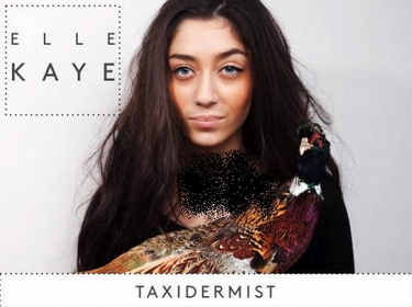 elle kaye taxidermist