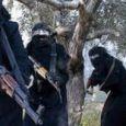 پیوستن بیش از ۷۰ زن آلمانی به داعش و ازدواج با آنان
