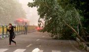 هشدار هواشناسی: وزش تند باد امشب در تهران