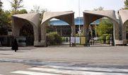 پیدا شدن جنین در فضای سبز دانشگاه تهران !