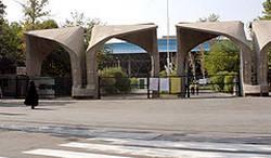 پیدا شدن جنین در دانشگاه تهران