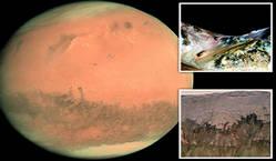 کشف آب در مریخ توسط ناسا